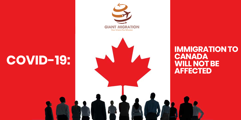 best immigration consultants in Qatar for Canad