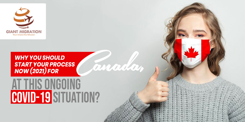 best immigration consultants in Qatar for Canada